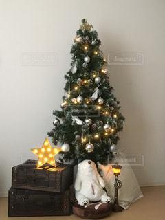 家のクリスマスツリーの写真・画像素材[2769053]