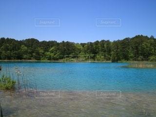 青い池の写真・画像素材[2790095]