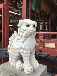 太宰府天満宮のかわいい狛犬の写真・画像素材[2741774]