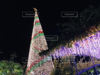 クリスマスツリーイルミネーションの写真・画像素材[2746089]