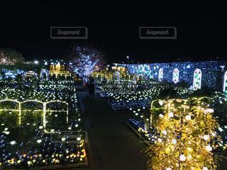 ライトアップされたお庭の写真・画像素材[2746100]