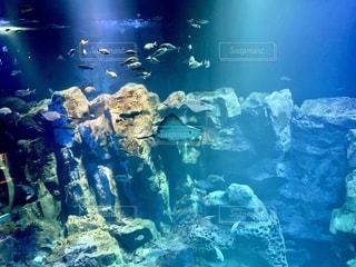 海の写真・画像素材[2755847]