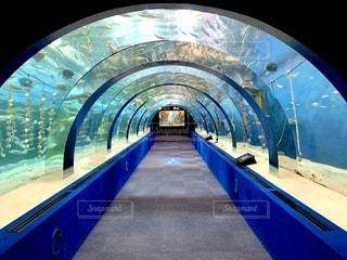 水中トンネルの写真・画像素材[2758922]