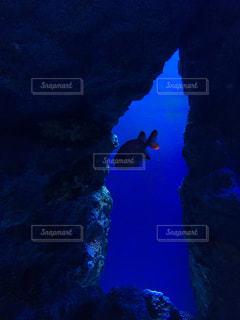 海の写真・画像素材[2782774]