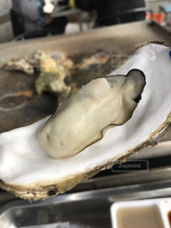 牡蠣小屋の写真・画像素材[2743579]