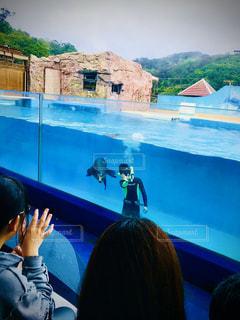 水のプールで泳ぐ人の写真・画像素材[2871326]