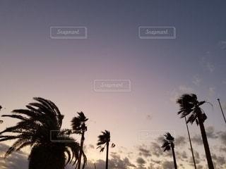 20191231夕焼け1の写真・画像素材[2840713]