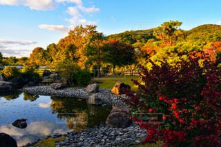 池田城跡の写真・画像素材[2964078]