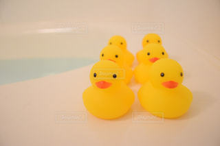 可愛いお風呂アイテムの写真・画像素材[2750944]