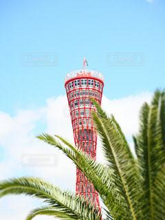 こどもの日の神戸ポートタワーの写真・画像素材[2794607]