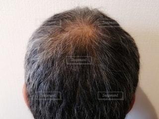頭のクローズアップの写真・画像素材[3019136]