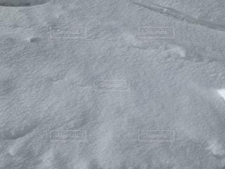 スキーの写真・画像素材[2760659]