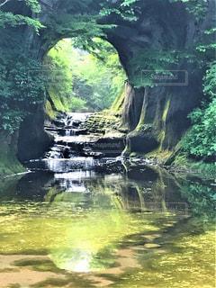 木々に囲まれた滝の写真・画像素材[2774710]