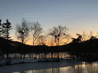 夕日による逆光の写真・画像素材[3286778]