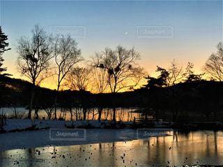 夕日と逆行の写真・画像素材[3319009]