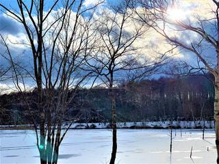 氷の張った湖の写真・画像素材[3319000]
