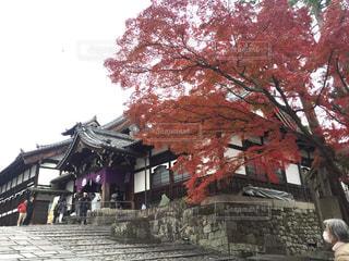 紅葉と寺院の写真・画像素材[2760283]