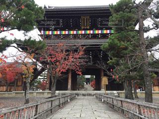 紅葉の寺院の写真・画像素材[2760312]