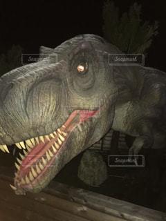口を開けた恐竜の写真・画像素材[2762137]