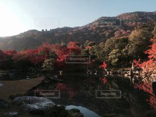 風景 - No.134335