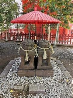 浅草神社の夫婦狛犬の写真・画像素材[2771083]