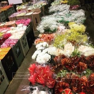 ブラジル の花市場の写真・画像素材[2781396]