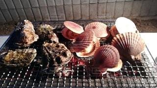 バーベキューで焼いたホタテとカキの写真・画像素材[3352545]