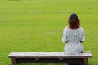 芝生でベンチに座る女性の写真・画像素材[3463651]