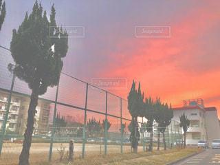 沈む夕日の写真・画像素材[2796540]