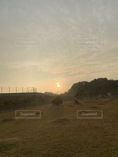 野原に沈む夕日の写真・画像素材[2794140]
