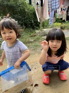 夏休みに虫を獲る姉妹の写真・画像素材[2800489]
