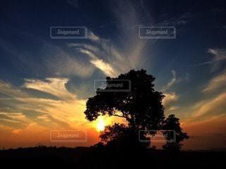 自然の写真・画像素材[46131]