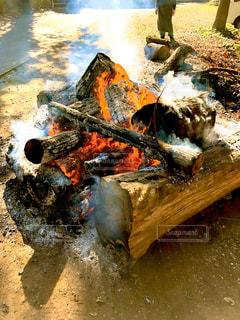 初詣での暖をとった場所の写真・画像素材[2837344]
