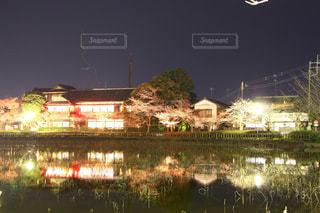 桜祭り、水面に映る夜景の写真・画像素材[2856370]