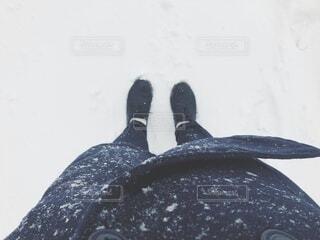 雪の日のお出かけの写真・画像素材[4039222]