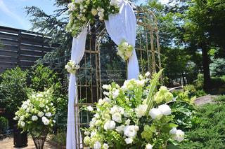 ガーデンでの結婚式の写真・画像素材[2808968]