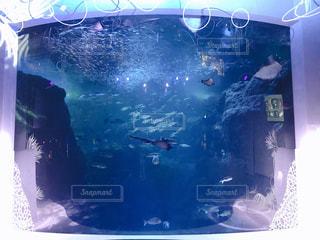 海中への入口の写真・画像素材[2820354]