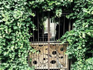 庭園の入り口の写真・画像素材[714294]