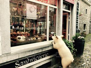 デュルビュイのかわいいお肉屋さんの写真・画像素材[714297]