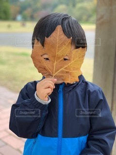 大きい葉っぱのお面の写真・画像素材[2825144]