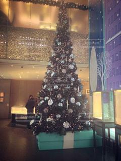 クリスマスの写真・画像素材[145493]