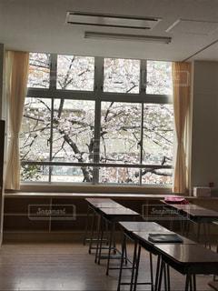 桜の写真・画像素材[417707]