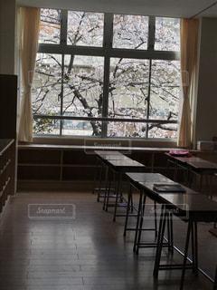 桜の写真・画像素材[417708]