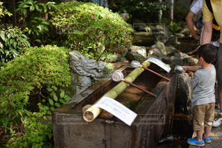 神社の写真・画像素材[120542]