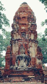 仏像と犬2の写真・画像素材[1022239]
