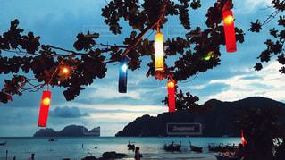 海辺の夕暮れの写真・画像素材[1022261]