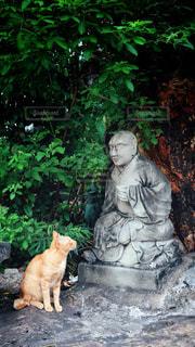 猫と石像 - No.1022266