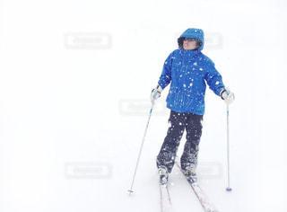 吹雪の中の写真・画像素材[1395251]