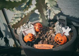 鉢植えハロウィンの写真・画像素材[1465576]
