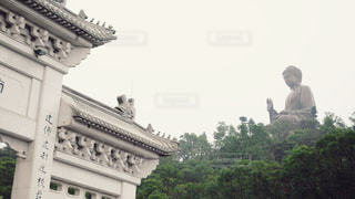 天壇大仏の写真・画像素材[1766691]